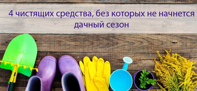 4 чистящих средства, без которых не начнется дачный сезон